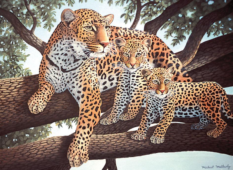 malen nach zahlen junior large leoparden vbs hobby bastelshop. Black Bedroom Furniture Sets. Home Design Ideas