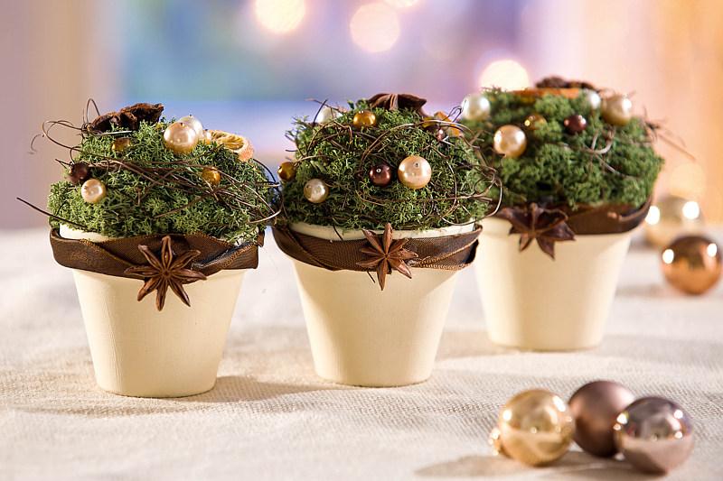 Terrakotta t pfe mit weihnachtlicher deko bastelshop und for Wohnung weihnachtlich dekorieren so geht s