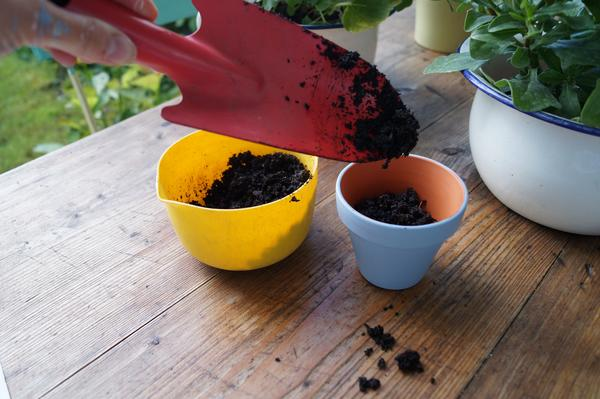 Kinderbasteln Tontopfe Bemalen Und Bepflanzen Vbs Hobby