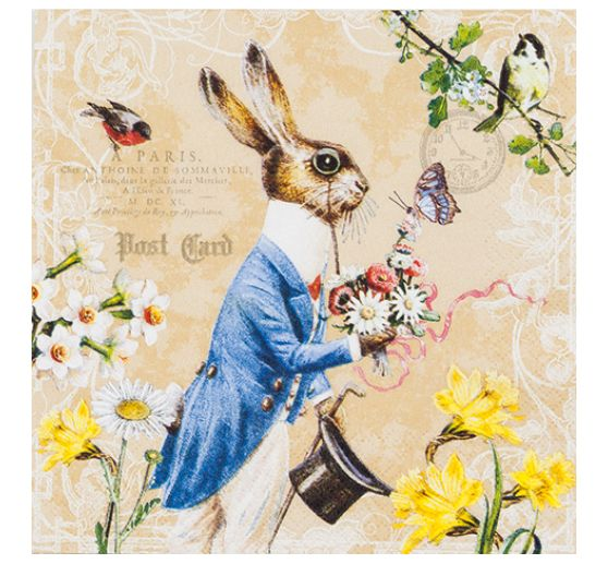 "Serviette ""Mr. Rabbit"""