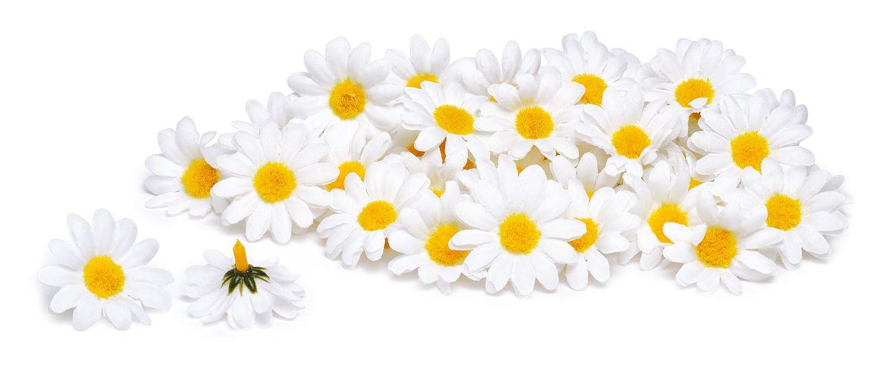50 Margeritenblüten Vbs Hobby Bastelshop